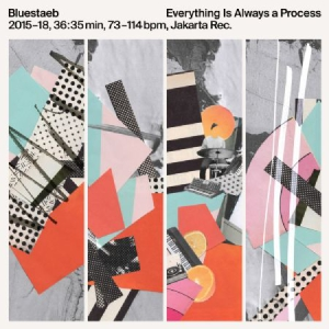 Bluestaeb - Everything Is Always A Process i gruppen VINYL / RNB, Disco & Soul hos Bengans Skivbutik AB (3232267)