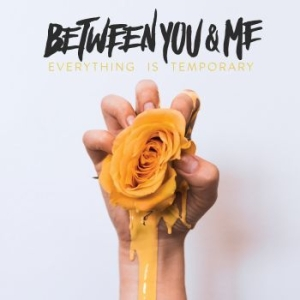 Between You & Me - Everything Is Temporary i gruppen CD / Rock hos Bengans Skivbutik AB (3249240)