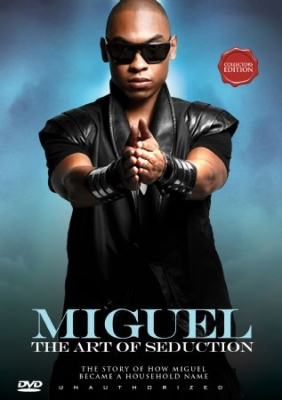 Miguel - Art Of Seduction i gruppen  hos Bengans Skivbutik AB (890536)