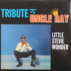 Stevie Wonder - Tribute To Uncle Ray