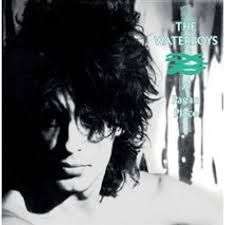 Waterboys The - A Pagan Place