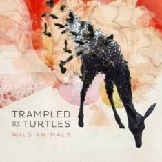 Trampled by Turtles - Wild Animals