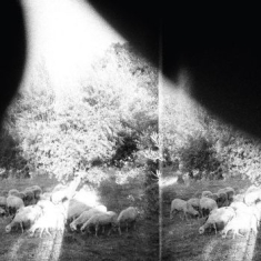 Godspeed You! Black Emperor - Asunder, Sweet And Other Distress (