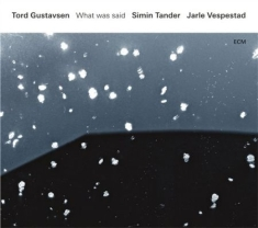 Tord Gustavsen,Simin Tander, Jarle - What Was Said
