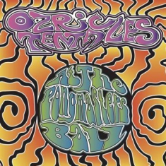 Ozric Tentacles - At The Pongmasters Ball