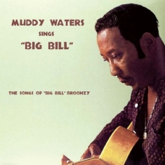 Waters Muddy - Sings Big Bill