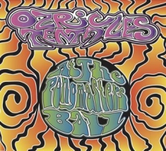 Ozric Tentacles - At The Pongmaster's Ball (Cd+Dvd)