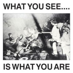 Here And Now/Alternative Tv - What You See Is What You Are