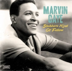 Gaye Marvin - Stubborn Kind Of Fellow