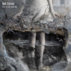 Sylvan Nad - The Bride Said No
