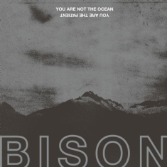 Bison - You Are Not The Ocean You Are The P