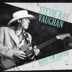 Stevie Ray Vaughan - Blues You Can Use