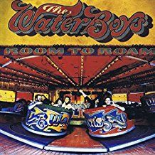 Waterboys The - Room To Roam