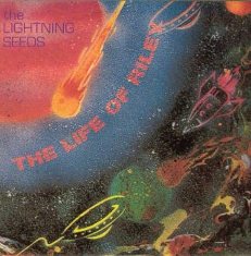 The Lightning Seeds - The Life of Riley