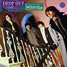 Barracudas - Drop Out With The.. -Hq-