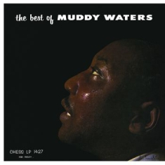 Waters Muddy - Best Of Muddy Waters (Import)