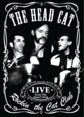 Head Cat - Rockin' The Cat Club