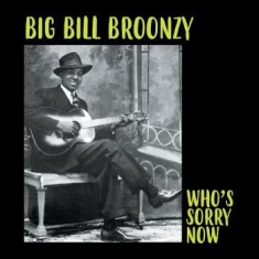 Broonzy Big Bill - Who's Sorry Now