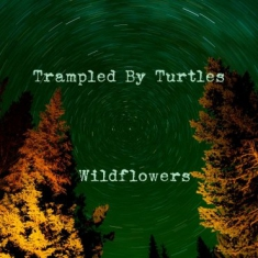 Trampled By Turtels - Wildflowers