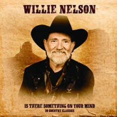 Nelson Willie - Is There Something On Your Mind