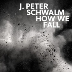 Schwalm J.Peter - How We Fall