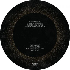 Dool - Here Now, There Then (Picture Disc)