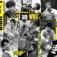 Stray Kids - I am who (Random Cover)