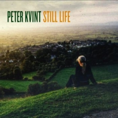 Peter Kvint - Still Life