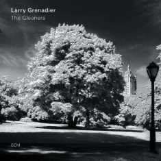 Grenadier Larry - The Gleaners (Lp)