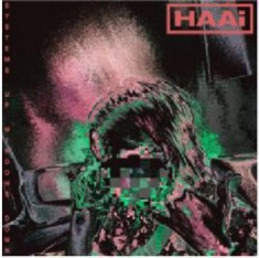 Haai - Systems Up, Windows Down
