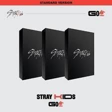 Stray Kids - Go Live - standard edition - version C