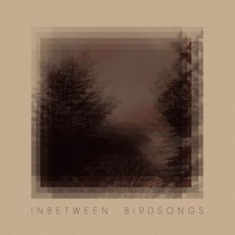 Gusset Matthias - Inbetween Birdsongs
