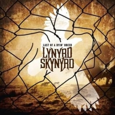 Lynyrd Skynyrd - Last Of A Dyin Breed