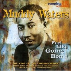 Waters Muddy - Feel Like Going Home