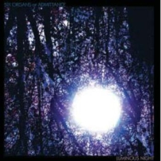 Six Organs Of Admittance - Luminous Night