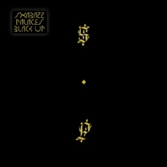 Shabazz Palaces - Black Up