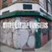 Stiff Little Fingers - Wasted Life (2 Cd)